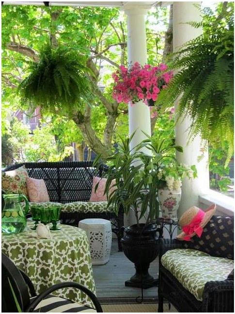 Patio Hanging Plants
