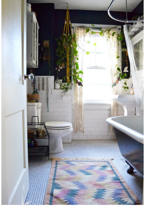 Hanging Plants for Bathroom
